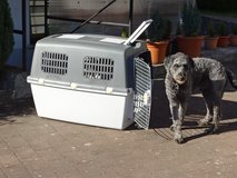 transport-box for big dogs - very good condition in Ramstein, Germany