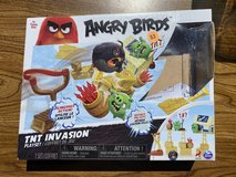 Angry Birds Game in Aurora, Illinois