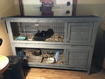 Show Rabbits and hutch in Fort Polk, Louisiana