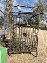 Iron Bird Cage in Yucca Valley, California