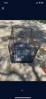 Dog crate in The Woodlands, Texas