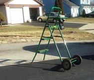 Rolling Step Ladder  *Price Drop* in Plainfield, Illinois