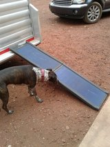 Dog ramp for large dogs in Travis AFB, California