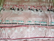 Mickey mouse club blanket in Plainfield, Illinois