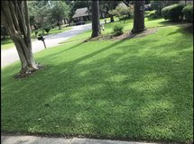 Lawn service and pressure washing in Bellaire, Texas