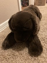 large stuffed dog in The Woodlands, Texas
