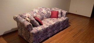 Beautiful Floral Couch in Aurora, Illinois