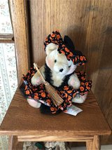 witchy bear in Glendale Heights, Illinois