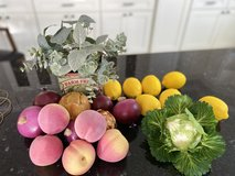 Faux fruit and veggies in The Woodlands, Texas