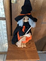 Halloween witch in Glendale Heights, Illinois