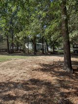 RV/Mobile home lot for rent - New Caney in Kingwood, Texas