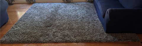 Huge 8x10 Area Rug (Price reduced!) in Glendale Heights, Illinois