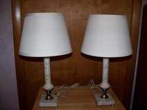 Vintage Satin Glass Lamps - Hand Painted Floral Design - Marble Base in Joliet, Illinois