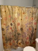 Shower Curtains in Chicago, Illinois