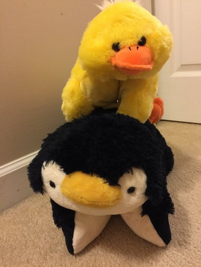 Pillow Pet And Pillow Chum Toys Games For Sale On Lejeune Bookoo