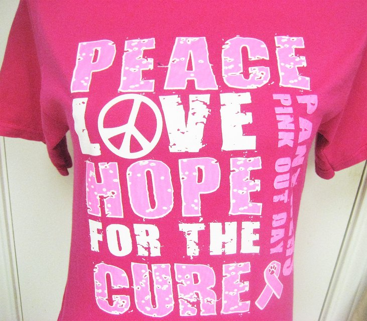 size 40 2506b dd1fd Pink Ribbon Breast Cancer Carolina PANTHERS Fitted T-Shirt ...