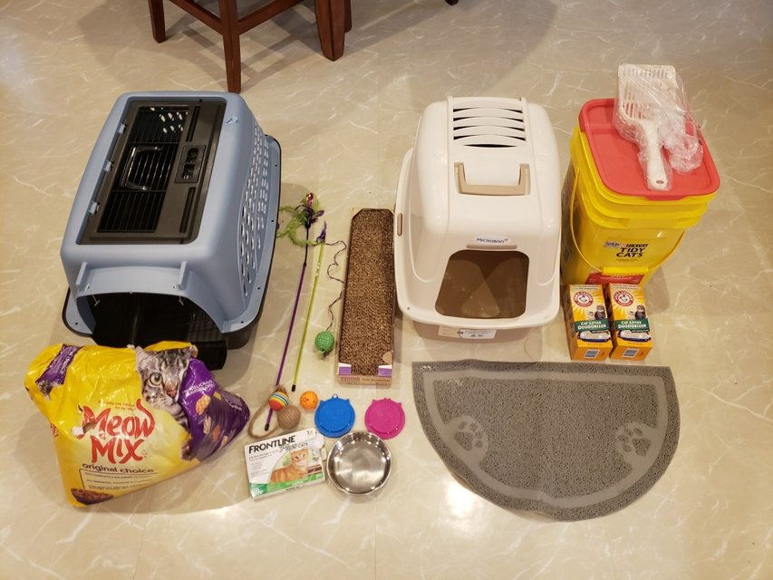 Cat Supplies   Pets: Supplies for sale on Okinawa bookoo!